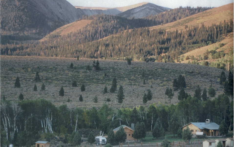Cow Camp Ranch