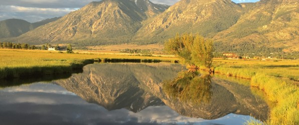 The Best of the Carson Valley