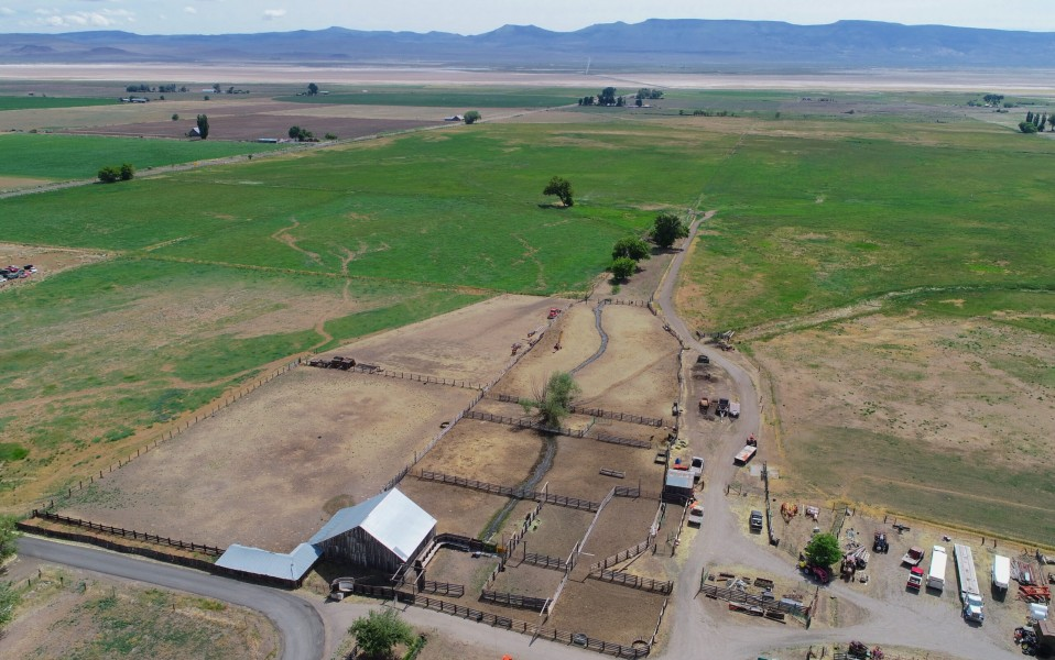 Cedarville Cattle & Hay Ranch